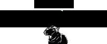 history-logo